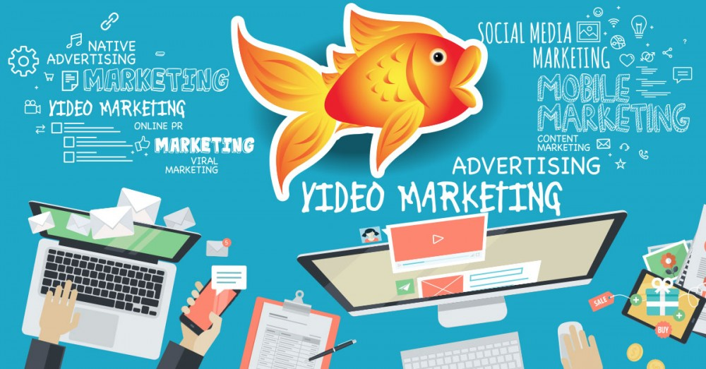 Short-Form Video: Marketing to Goldfish